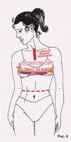 ширина груди - в половинном размере, т. к. проходит через полузанос